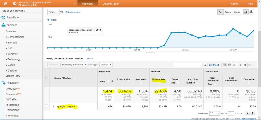 Screen shot of Google analyitcis for Paminipigs.com