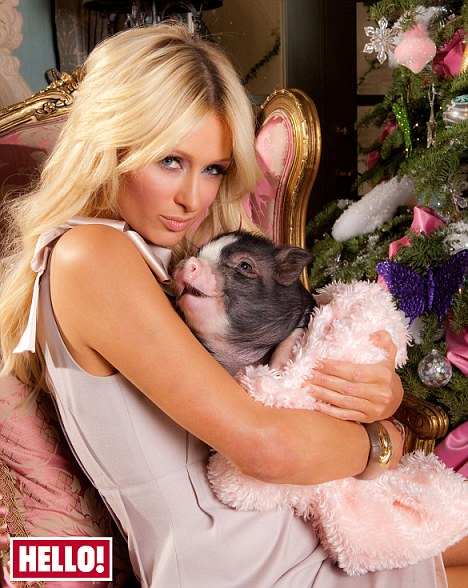 paris Hilton cuddling her mini pig